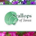 Scallops of Jávea