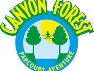 Canyon Forest