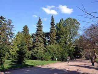 Le Parc de la Tȇte D'Or