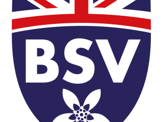 The British School of Vila-real